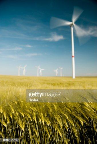 Wind turbine in field : Stock Photo