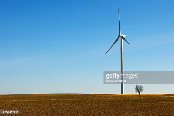 Wind turbine in field, Reims, France