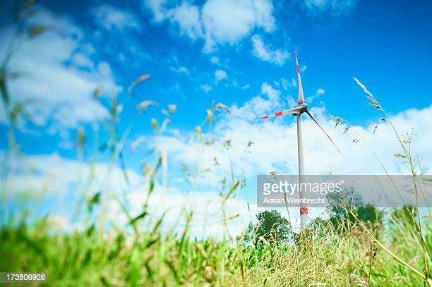 Wind turbine in grassy rural field