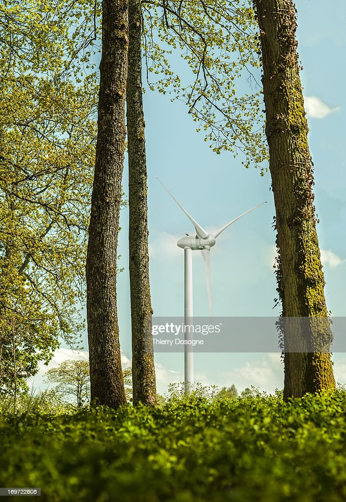 Wind turbine : Stock Photo