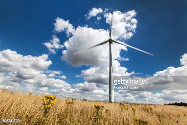 Wind turbine renewable energy resource and environmental issues