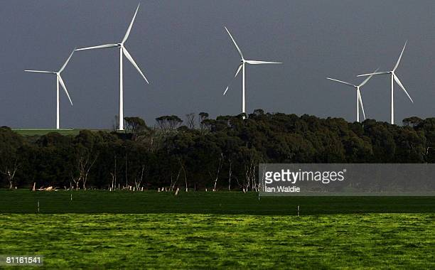 Wind turbines from the Woolnorth Wind Farm line the hills at Cape Grim May 19 2008 in Launceston Australia The Produce of Heaven Company was launched...