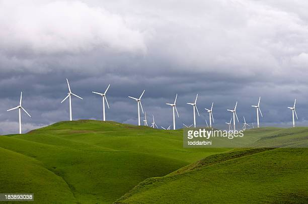 Turbine eoliche in California