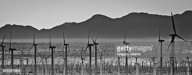 Wind turbines in Southern California