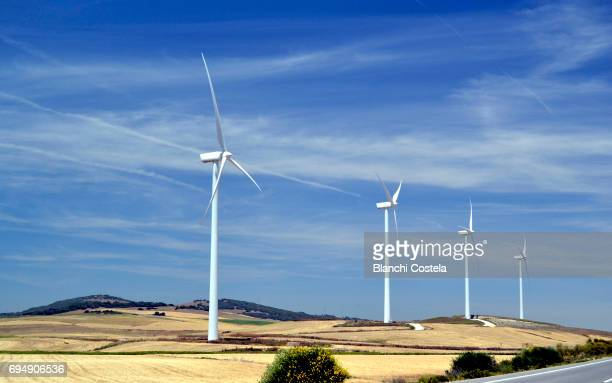 Wind turbines in the field in spring
