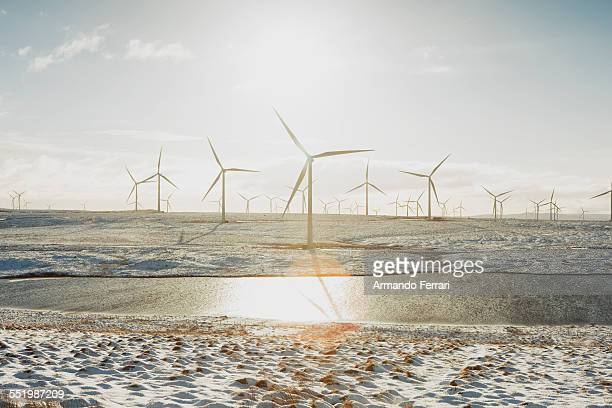 Wind turbines on sandy landscape, Ayrshire, Scotland