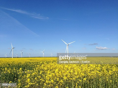 Wind Turbines On Yellow Field Against Sky