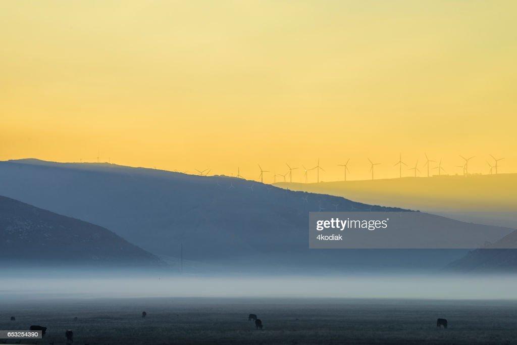 Wind Turbines : Bildbanksbilder