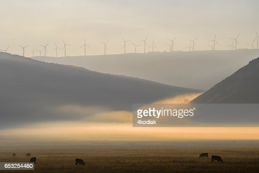 Wind Turbines : Stock Photo