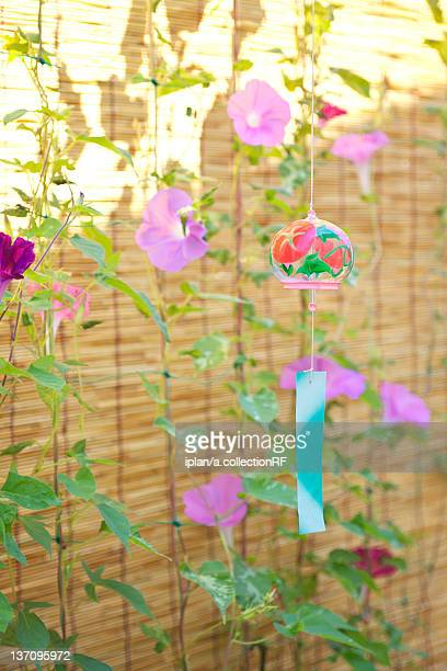 Windchime and Morning Glory Flowers