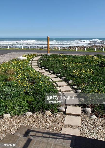 Winding Pathway Through Garden