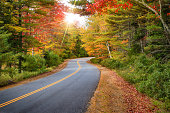 Winding road curves through splendid autumn foliage in New England. Sun rays peeking through colorful trees.