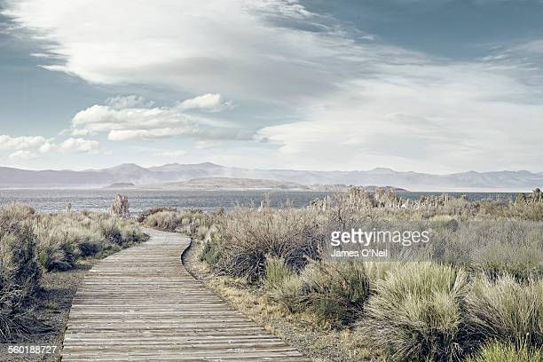 winding wooden path towards distant lake