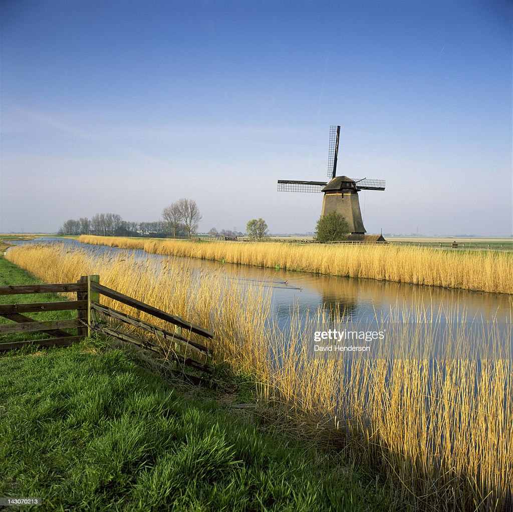 Windmill and wheatfield along rural river : Stock Photo