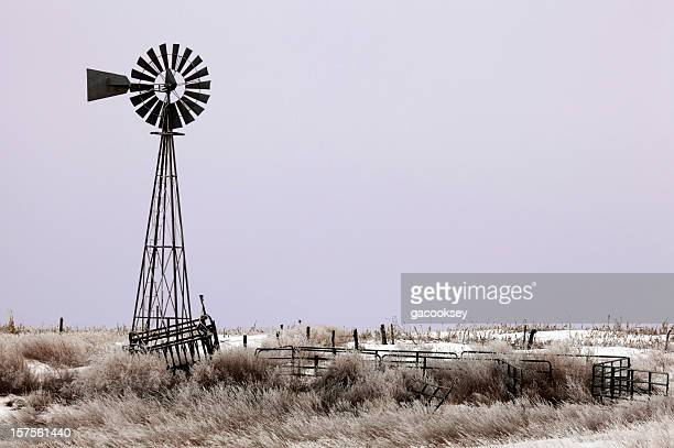 Windmill, grassland, purple sunrise