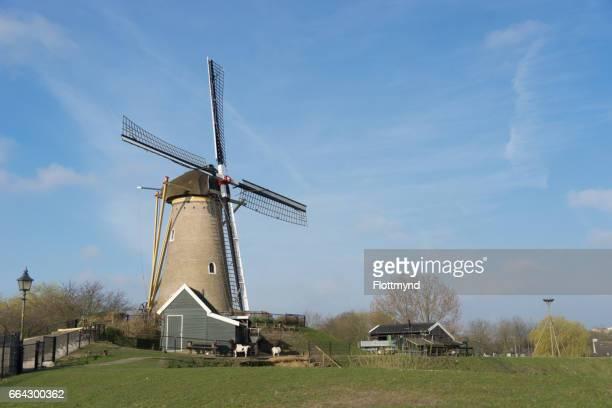 Windmill in Hoofddorp
