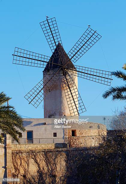 Windmill on Palma Seafront