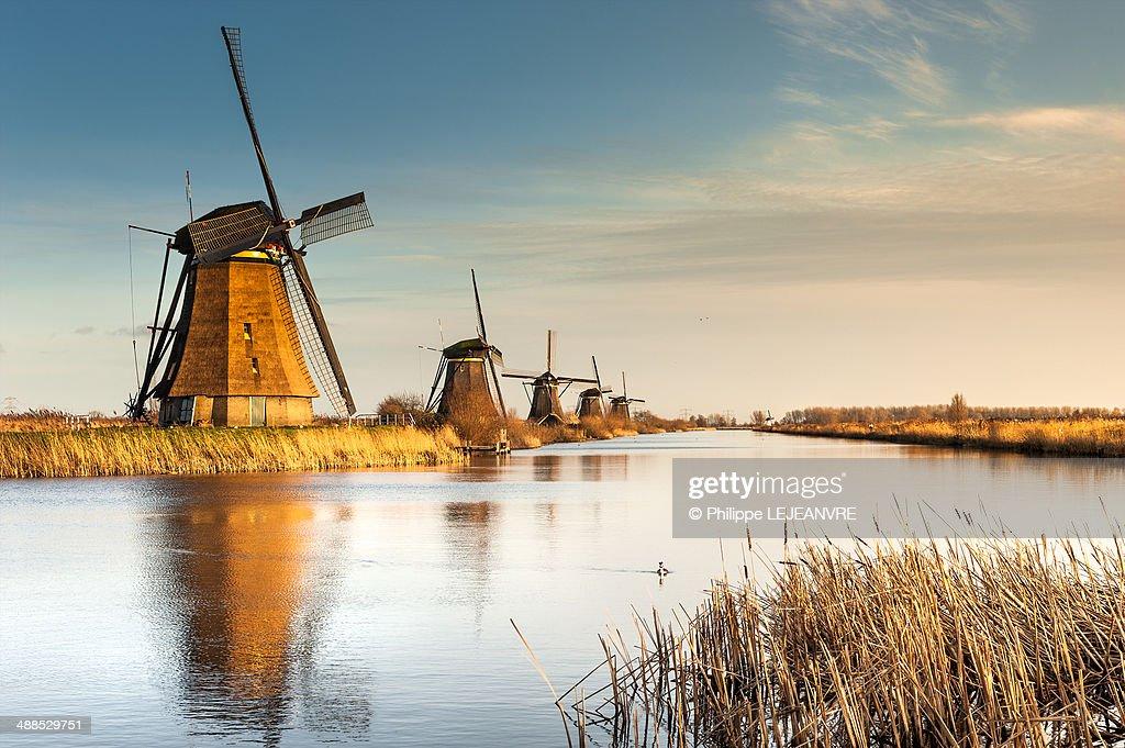 Windmills at sunset in Kinderdijk