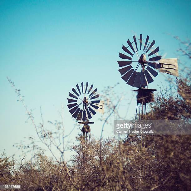 Windmills in Kruger