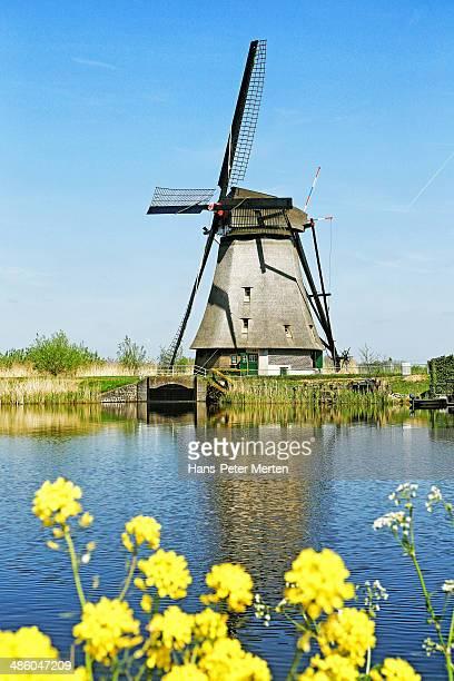 Windmills of Kinderdijk, Netherlands