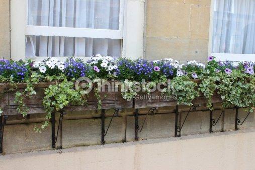 jardini re avec fleurs sur maison g orgienne de briques de. Black Bedroom Furniture Sets. Home Design Ideas