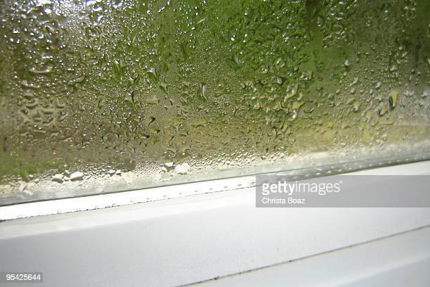 Fenêtre Buée