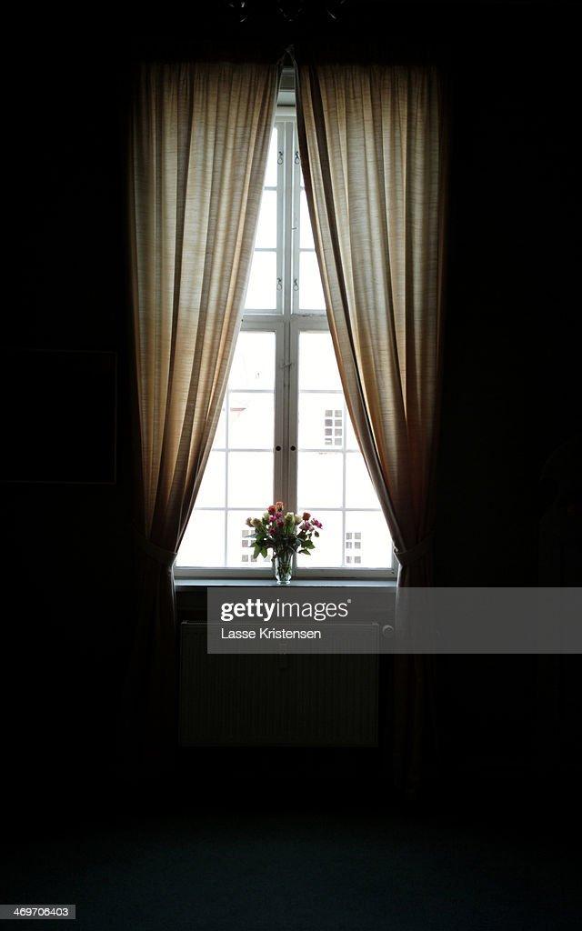 Window : Stock Photo