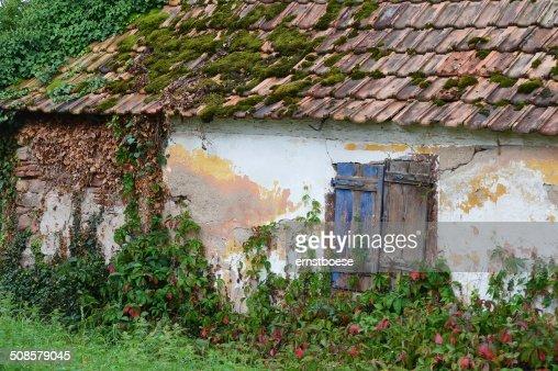 window : Bildbanksbilder
