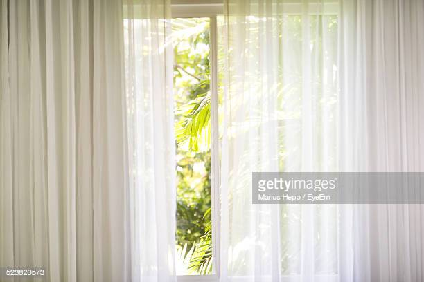 Window Seen Through Tulle Curtains