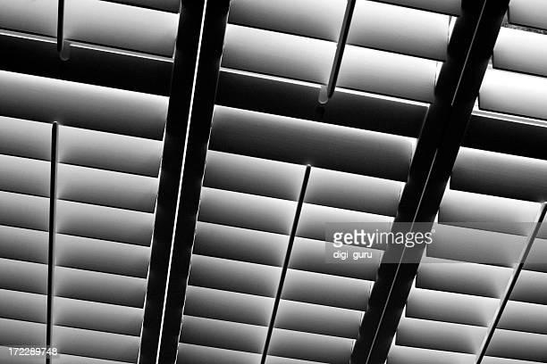 Window Shutters Texture