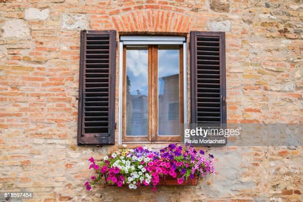 Window with flowers in San Gimignano, Tuscany