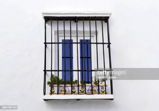 Window with flowers in Vejer de la Frontera in spring