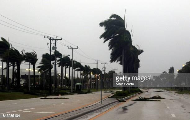 Winds lash palm trees as Hurricane Irma strikes on September 10 2017 in Boca Raton Florida Hurricane Irma made landfall in the Florida Keys as a...