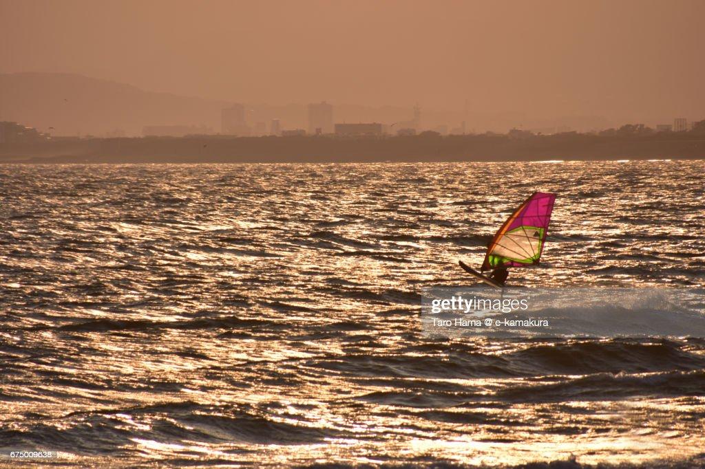 A windsurfer on the sunset beach : ストックフォト