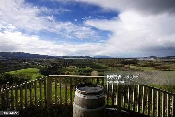 Wine Barrel view over vineyards