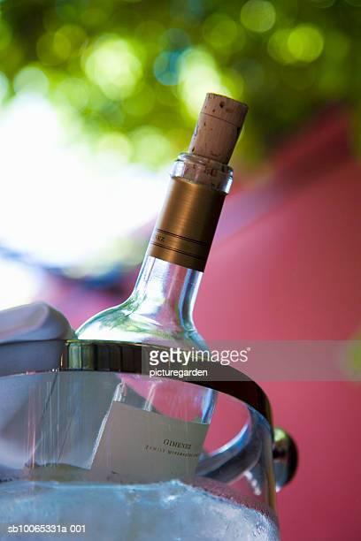 Wine bottle in ice bucket, close-up