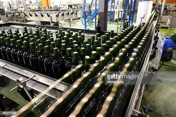 Wine bottles in a wine bottling factory