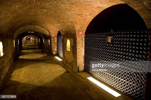 Wine Cellar at Moet and Chandon in France