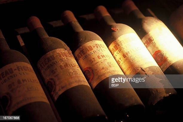 Wine cellar Bottles of Saint Emilion