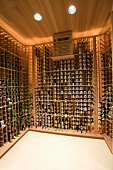 Wine cellar of Palm Springs home
