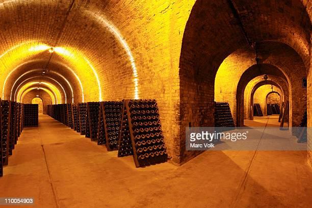 A wine cellar