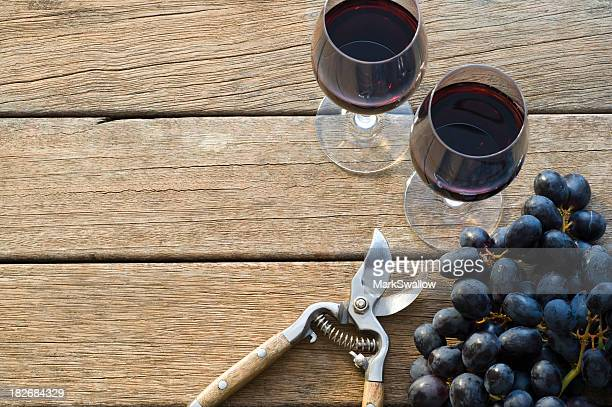 Vin vendanges
