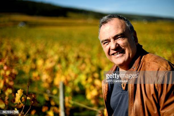 Winemaker Dominique Gallois poses in his vineyard part of the grape variety of Burgundy on October 11 2017 in GevreyChambertin / AFP PHOTO / ERIC...