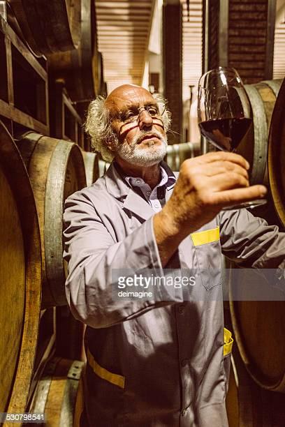 Winemaker homme dégustation de vins dans la cave à vin