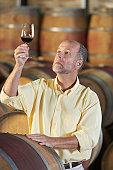 Winemaker Observing Color in Wine