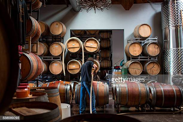 Winemakers working in Carruth Winery in San Diego, CA.