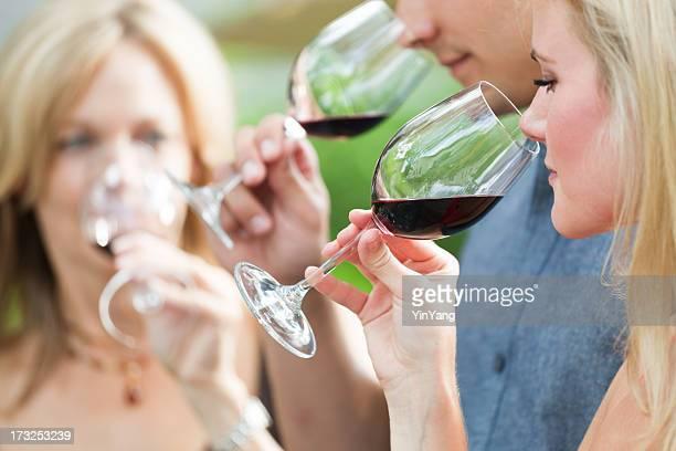 Degustazione di vino gruppo di persone annusare e degustazione di vino rosso, Napa Valley