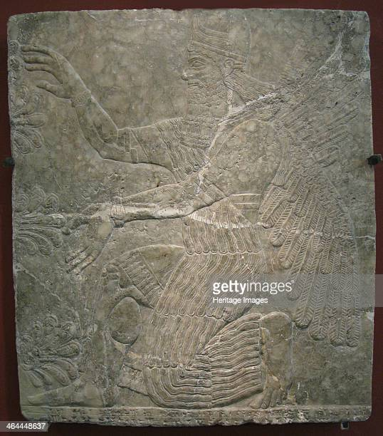 Winged deity by the sacred tree Relief from the palace of Ashurnasirpal II at Kalhu Nimrud 9th century BC Found in the collection of the State...