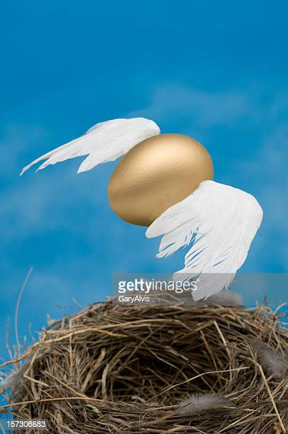 Winged egg flying above bird nest with blue background.
