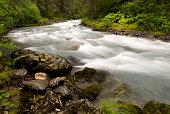 The rushing, Winner Creek, near Girdwood Alaska